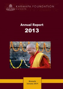 KFE Annual Report 2013