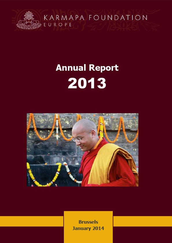 KFE Annual Report 2013